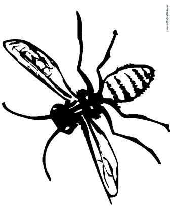 wasp107